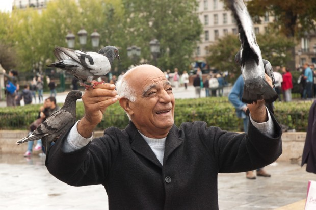 Man with four pidgeons