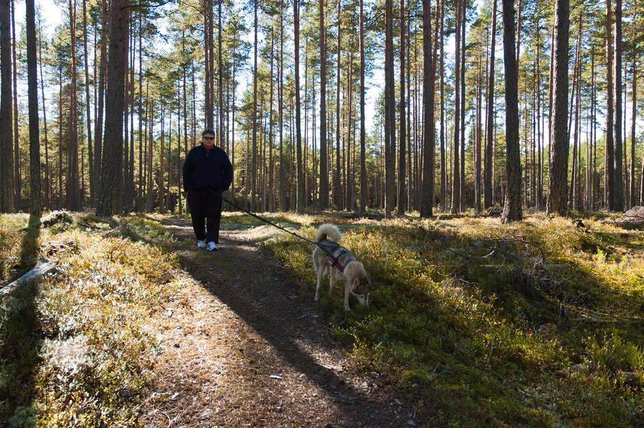 Øyvind in the forest